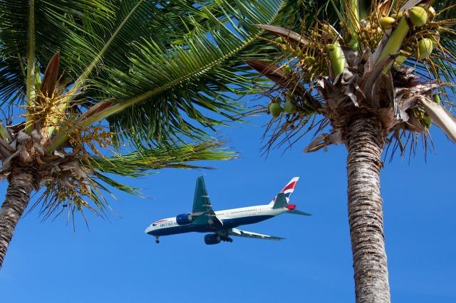 air-84603_1920 Aeroplane and Palm Trees